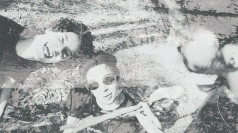 Flor-Cadáver