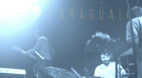 Paraguaii